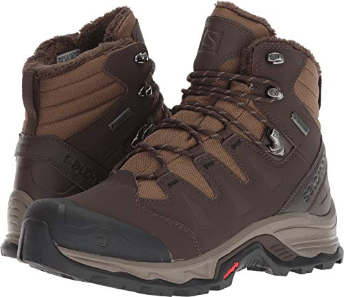 019dd265031 Salomon Men's Quest Winter GTX Hiking Boot, Bungee Cord/delicioso/Black, 10  D US