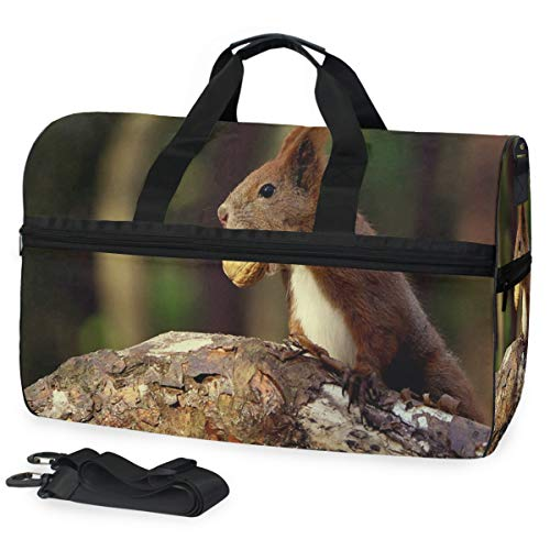 Yummy Nut Red Squirrel Sports Gym Bag with Shoes Compartment Travel Duffel Bag for Men Women
