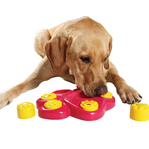 Uniquorn Large Footprint Dogs Educational Toys Pet Hunt Treasure Bowl Discipline Toy Effective Exercise Pet Smell and Feeding (Treasures Musical Figurine)