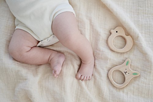 Gift for baby: Extra Soft Drooling Bibs and Wooden Teether Toy Set