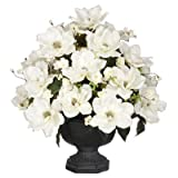 Artificial Magnolia with Cherry Blossoms Urn Finish: Black, Flower Color: White