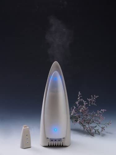 Air Purifier Humidifier with FREE ONE Scent Aroma | Shopee
