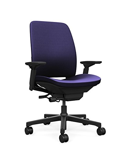 Fabric Black Navy Frame - Steelcase Amia Ergonomic Office Chair with Adjustable Back Tension and Arms | Flexible Lumbar with Sliding Seat | Black Frame and Buzz2 Navy Fabric