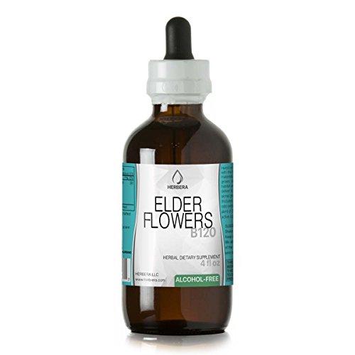 Elder Flowers B120 Alcohol-Free Herbal Extract Tincture, Organic Elder Flowers (Sambucus Nigra) Dried Flowers (4 fl (Elder Flower Extract)