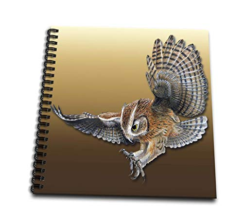 (8x8 drawing book) - BLN Vintage Wildlife Pets and Insects Collection - Owl in Flight with Claws Ready to Grab Prey - Drawing Book