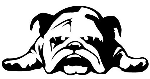 DOG - Car Stickers ENGLISH BULLDOG TIRED PUPPY DOG pattern car window car body decal Car Styling Vinyl Sticker 9 1/2 x 4 1/2 inch Shipped from USA