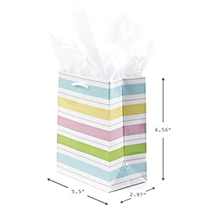 Hallmark Small Bag with Tissue Paper (Pastel Stripe)