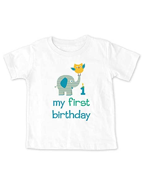 My First Birthday Boy Elephant Owl Design