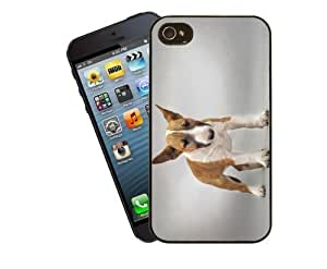 Eclipse Gift Ideas Pit Bull Terrier Phone Case, DesignFor Apple Ipod Touch 5/Cover