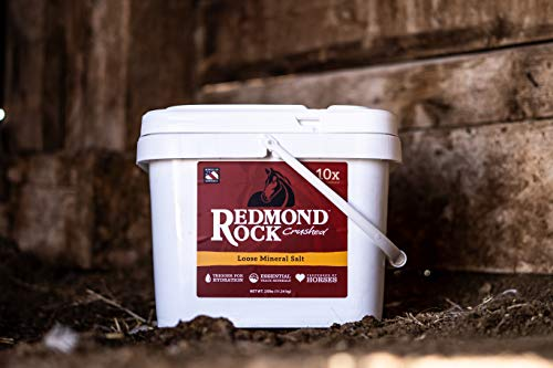 Redmond - Rock Crushed Loose Mineral Salt for Horses, 25 lb. bag by REDMOND (Image #4)