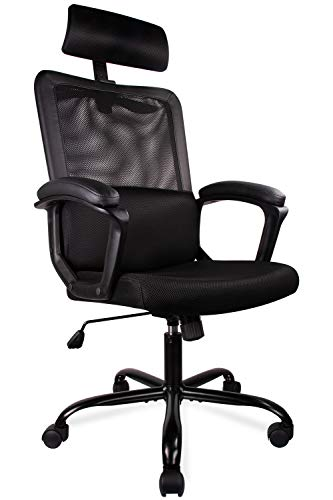 Smugdesk Ergonomic Office Chair High Back Mesh Office Chair Adjustable Headrest Computer Desk Chair for Lumbar Support
