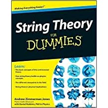 String Theory For Dummies 1st (first) edition Text Only
