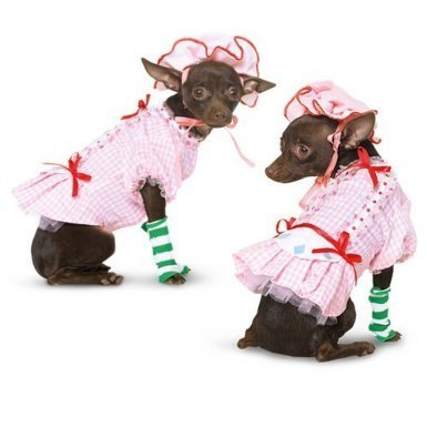 Country Pup Strawberry Shortcake Dog Costume (X-Small) (Bestfriend Costumes)