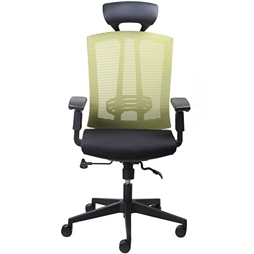 CMO 24 Hour High-Back Office Ergonomic Chair with Tilt Lock, Computer Chair with Adjustable Headrest and Flexible Armrest, Lime Green Mesh