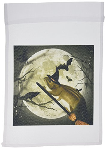3dRose fl_150172_1 Cute Vintage Squirrel on a Broom with a Harvest Moon and Witch's Hat She Is Ready for Halloween Garden Flag, 12 by 18-Inch ()