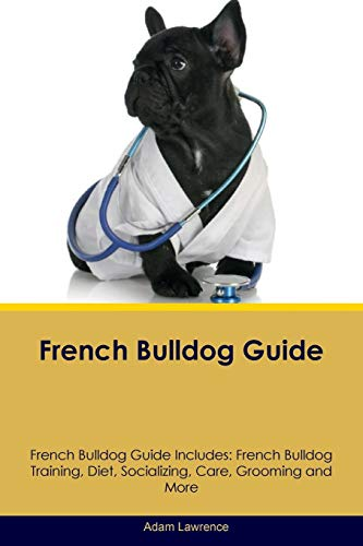 french bulldog guide - 7