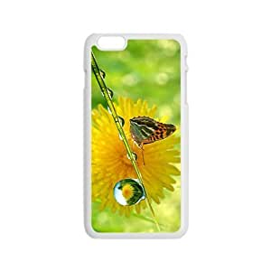 The Attractive Butterfly Hight Quality Plastic Case for Iphone 6