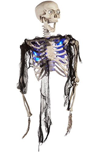 Morbid Enterprises Blue Half Body Skeleton Halloween Decor, Multi, One Size