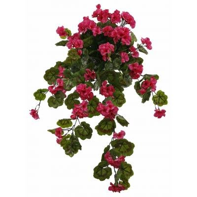 Rose Pink Outdoor Rated Geranium Hanging Bush