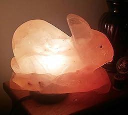 Rabbit Himalayan Salt Lamp