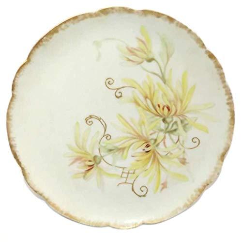 Antique 1896 Haviland Limoges Porcelain Hand-Painted Flower Dinner Plate Signed