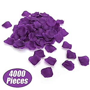 Aspire 4000 Pieces Silk Rose Petals, Artificial Flower Confetti for Wedding Party Gift Decoration-Dark Purple 6