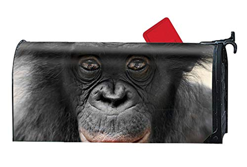 Animal Bonobo Monkeys Magnetic Mailbox Covers, Yard Decorations Suitable for Spring, Summer, Fall/Autumn and Winter