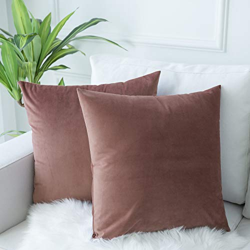 JUSPURBET Velvet Throw Pillow Covers for Sofa Couch Bed,Pack of 2 Throw Pillow Cases,Decorative Soft Pillowcases,18x18 Inches,Jam (Pillow Velvet Covers Throw)