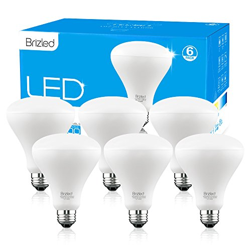 Indoor Flood Light Bulb Sizes in US - 2
