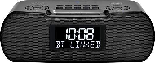 Sangean RCR-30 FM-RBDSAMBluetoothAux-in Digital