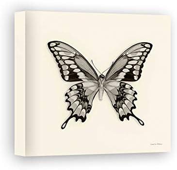 Impresión sobre Lienzo Wall Art Van Swearingen Debra Butterfly Vi BW Crop: Amazon.es: Hogar