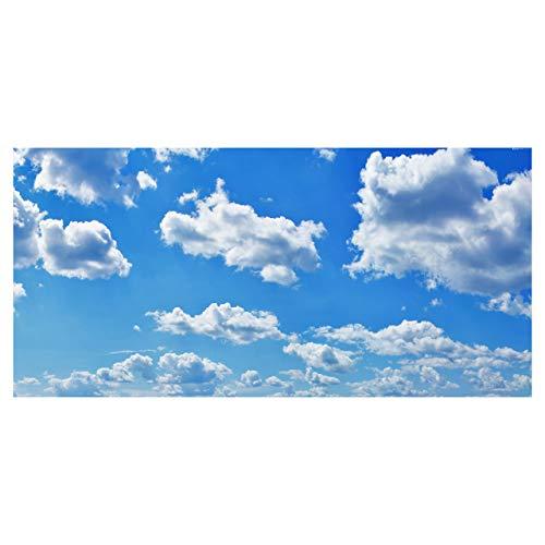 Cloud 001 Fluorescent Light Filters 2x4 High Pixel Light Covers