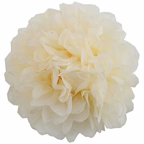 Lightingsky 10pcs DIY Decorative Tissue Paper Pom-poms Flowers Ball Perfect for Party...