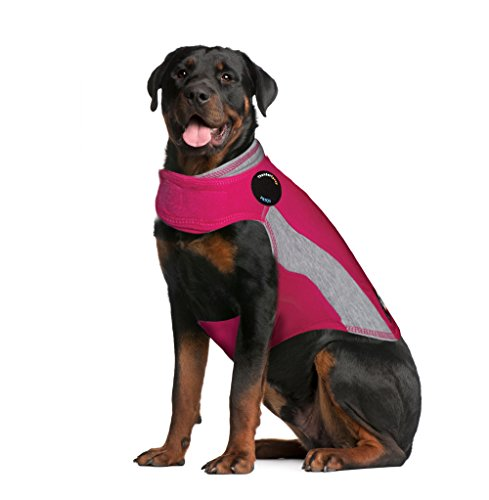 ThunderShirt Polo Dog Anxiety