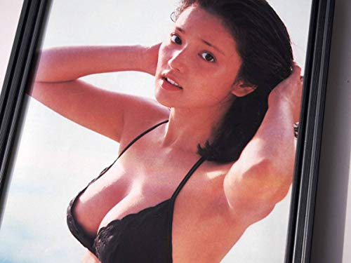 額装水沢アキ巨乳水着ビキニグラビアセクシー70年代アートフレームポスター写真集カタログカレンダー
