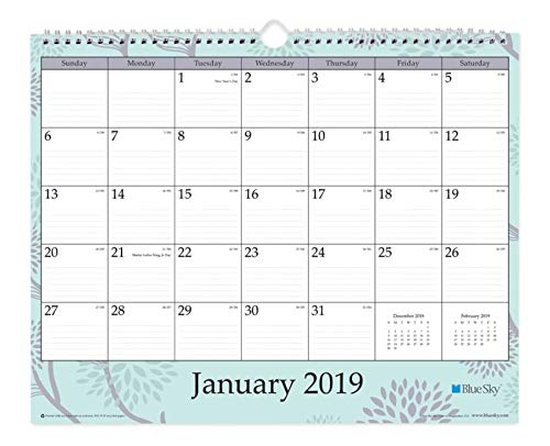 Blue Sky 2019 Monthly Wall Calendar, Twin-Wire Binding, Ruled Blocks, 15