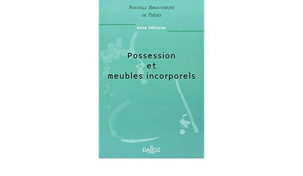 Possession Et Meubles Incorporels 1ere Edition Amazon Ca Pelissier