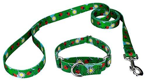 Country Brook Petz   Ladybug Picnic Martingale Dog Collar & Leash - Medium