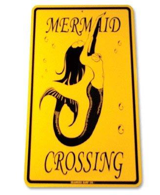 Seaweed Surf Co