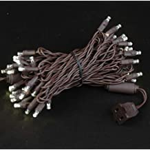 Novelty Lights, Inc. 50 LED Outdoor Party Christmas Mini Light Set, Warm White, Brown Wire, 50 Light, 25' Long