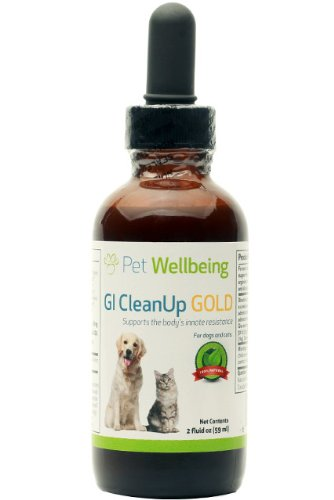 Pet Wellbeing - GI CleanUp Gold for Dog Worms - A Natural, Herbal Supplement for Treatment of Internal Parasites - Helps Maintain a Healthy Gastrointestinal (GI) Tract - 2 oz Liquid Bottle