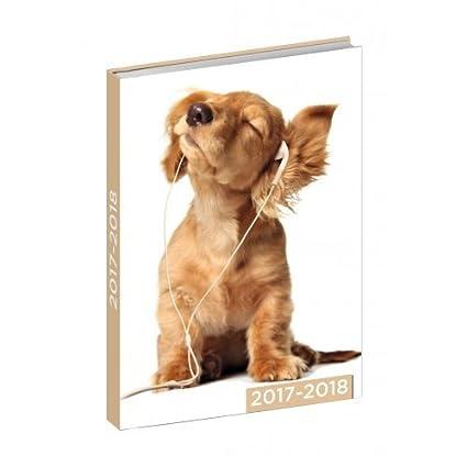 Agenda 2017/2018 – perros graciosos – 12 x 17 cm – éxito de ...