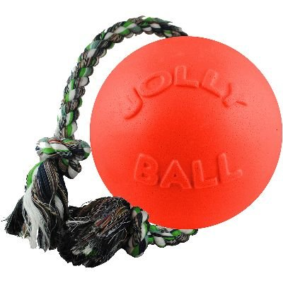 Buy jolly pets romp-n-roll toy, orange, 4.5\