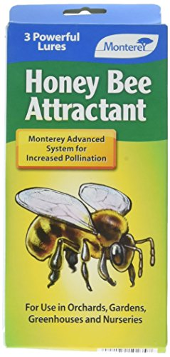 Monterey Honey Bee Attractant - coolthings.us