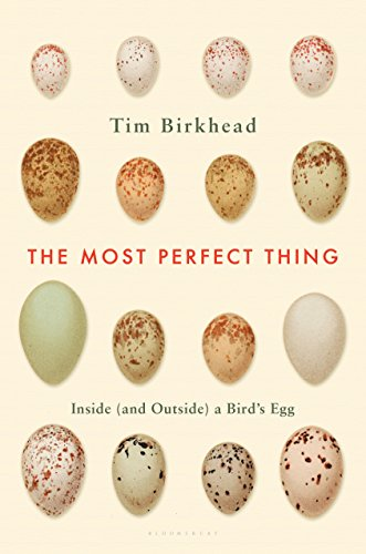 (The Most Perfect Thing: Inside (and Outside) a Bird's Egg)