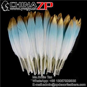 Maslin CHINAZP Bulk Hand Painted Feather 100 pcs/lot Loose Gold Dipped Baby Pink Feathers for Mask Jewelry Craft Dress Decor - (Brand: New, Color: Light Blue, Size: 12 to 18 cm)]()