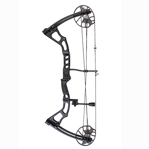 Southland Archery Supply SAS Feud 70 Lbs Compound Bow Target Field (Camo with Pro Package) (Black Bow Only)