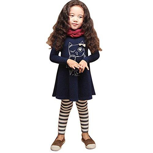Zhengpin Baby Girls Autumn Clothes Long Sleeve Party Owl Print Tops T-Shirt Dress (Girls Owl Dress)