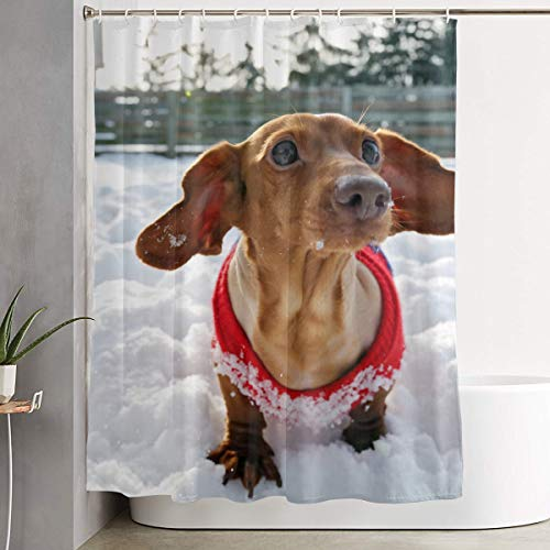 Techdecorhomee Shower Curtains Set with Hooks Dachshund Dog Soap Mildew Resistant Waterproof Antibacterial Polyester Decor Bathroom Curtain 6071inch/150180cm