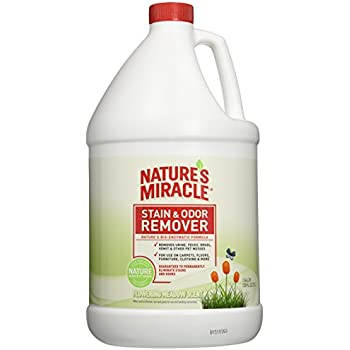 Amazon Com Nature S Miracle Stain Amp Odor Remover